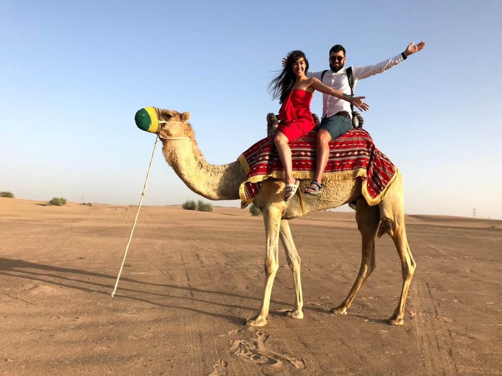 Дубаи, прогулка на верблюдах